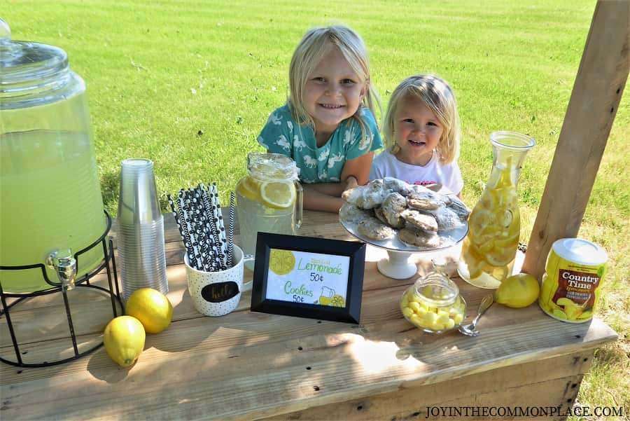 Country Lemonade Stand