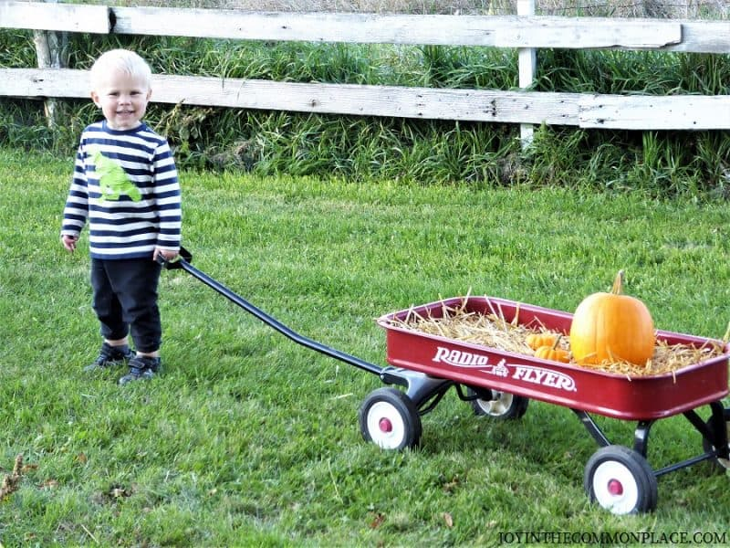 My boy pulling the wagon Harvest Party