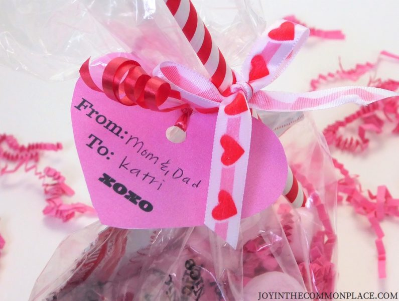 Valentine's Day Treat Bag and Free Printable