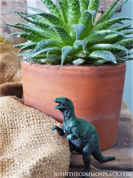 Rustic Dinosaur Birthday Party