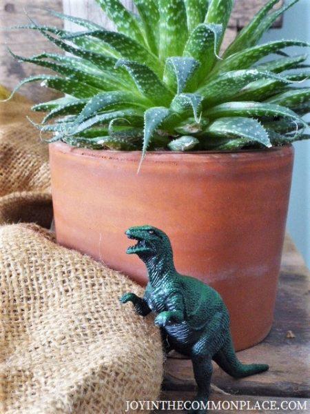 Rustic Dinosaur Birthday Party